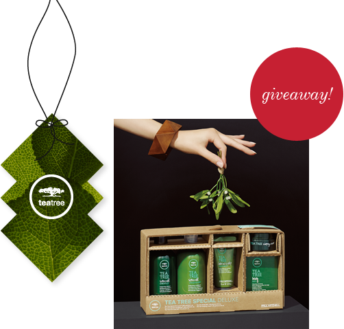 image of tea tree holiday gift set giveaway