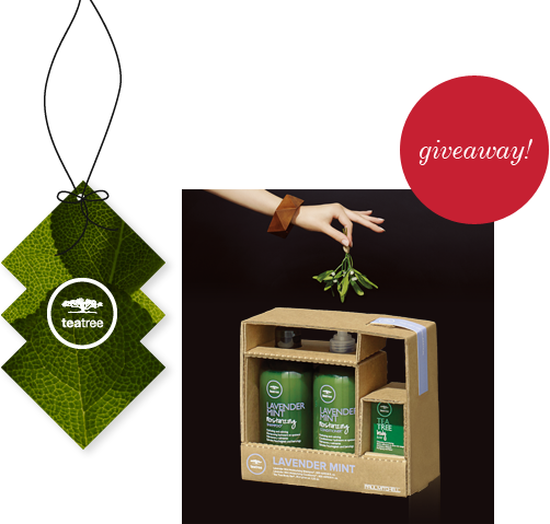 image of tea tree gift set giveaway